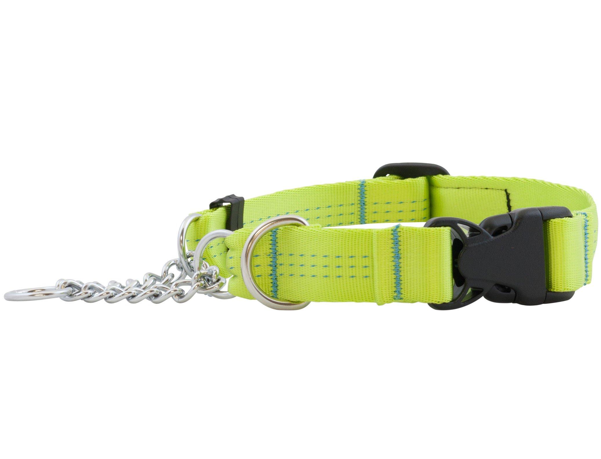 Canine Equipment Technika 1-Inch Quick Release Martingale Dog Collar, Medium, Lime