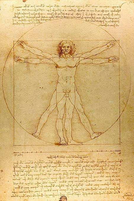 Amazon.com: Leonardo Da Vinci Vitruvian Man Drawing Sketch ...