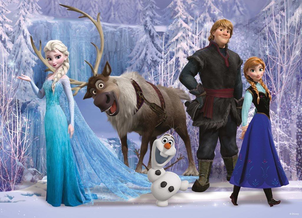Disney FROZEN FEVER 2015 the Movie CAST Whole Group 3D cartoon Pillow Case Zippered custom 20'' X 30'' Brand New