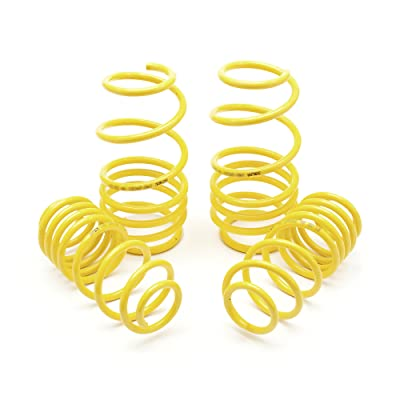 Apex 60-9000 Lowering Springs: Automotive