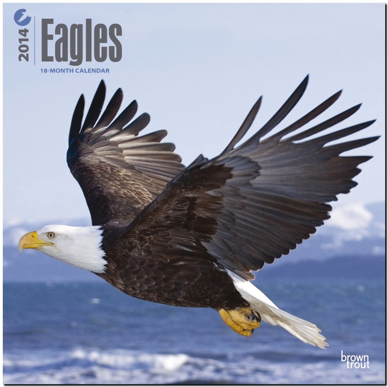 Eagles 18-Month 2014 Calendar (Multilingual Edition) by Browntrout Pub