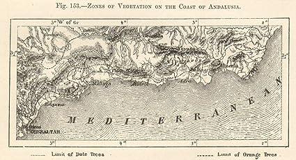 Zonas de vegetación, Costa de Andalucía. Gibraltar-Malaga-Almeria. Mapa de Bosquejo 1885 - Mapa Antiguo Vintage - Mapas Impresos de España: Amazon.es: Hogar