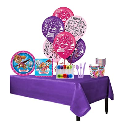 Amazon.com: Paw Patrol rosa niñas completo paquete de fiesta ...