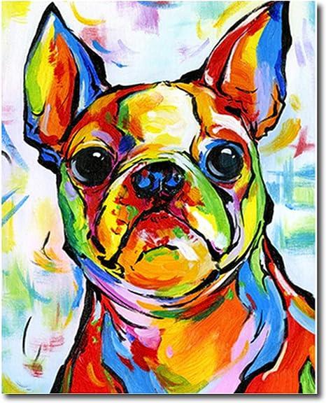 Jinlaili Colorido Perro Pintar por Numeros para Adultos Ni/ños Pintura por N/úmeros con Pinceles y Pinturas Decoraciones DIY Conjunto Completo de Pinturas para el Hogar 16*20 Pulgadas, Sin Marco