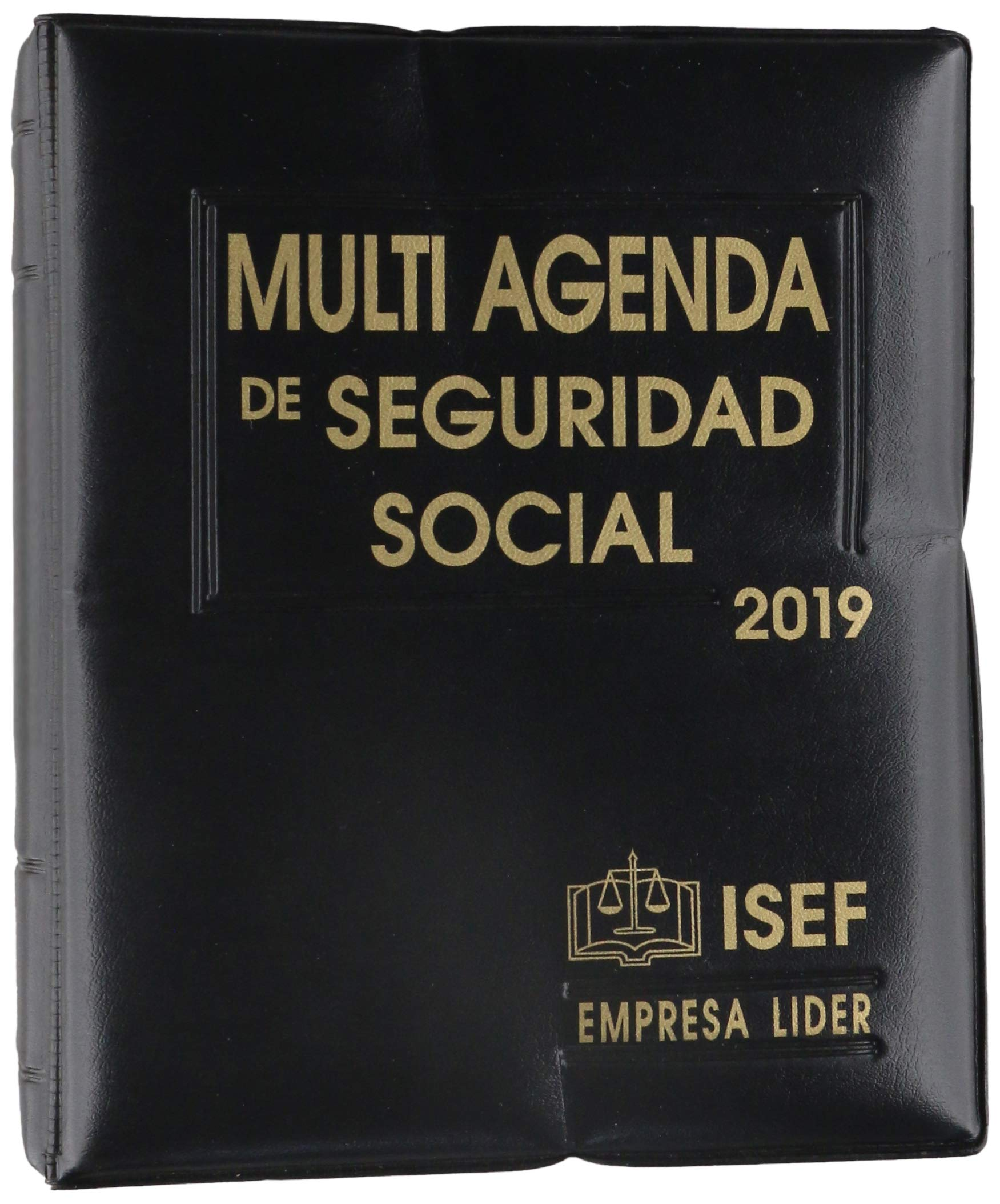 MULTI AGENDA DE SEGURIDAD SOCIAL 2019: EDICIONES FISCALES ...