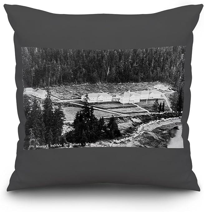 Wrangell, Alaska – Antena view de Wrangell Instituto para los ...