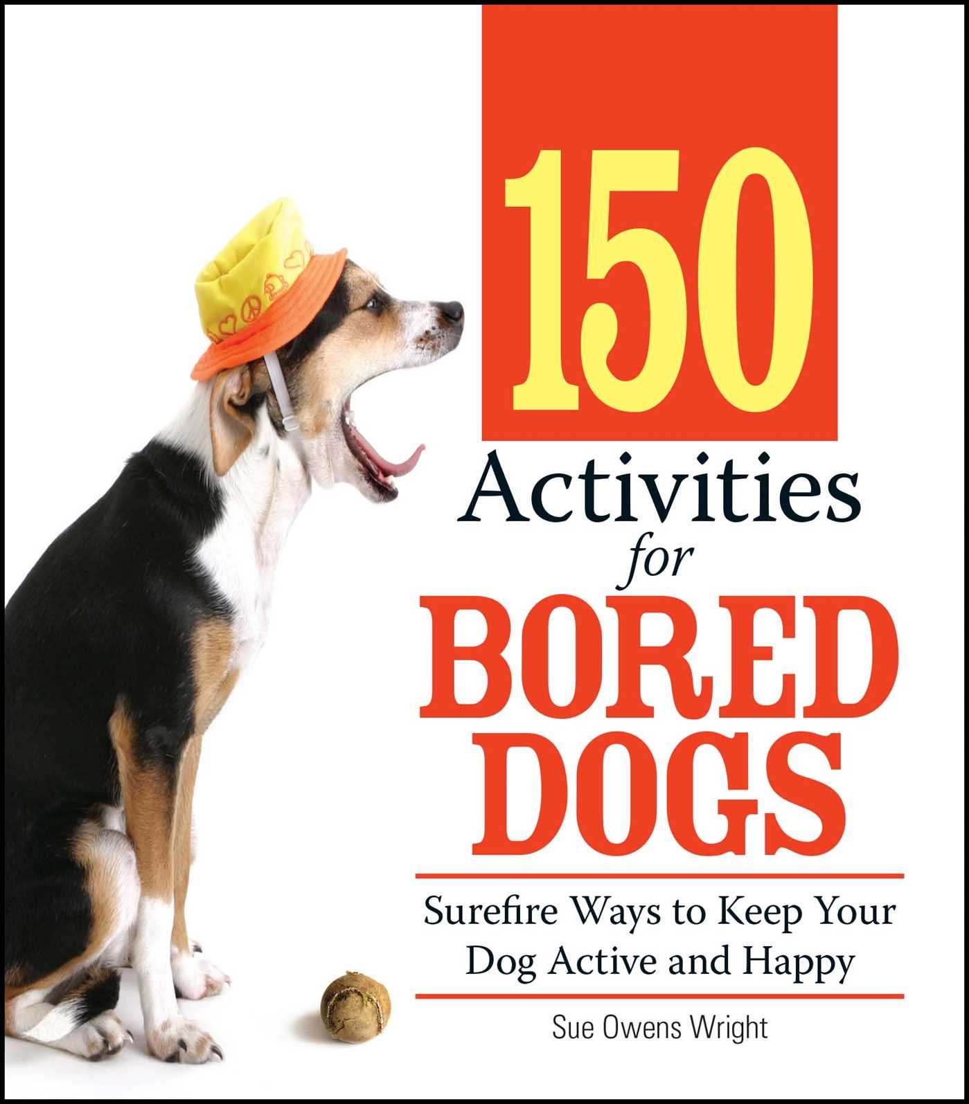 150 Activities For Bored Dogs Surefire Ways to Keep Your Dog