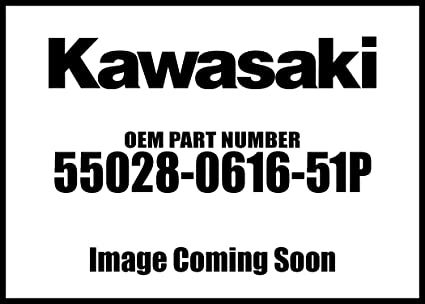 Amazon.com: Kawasaki 2017 Ninja 1000 Abs C L G Rh Side ...