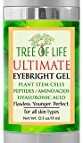 Flawless. Younger. Perfect. Ultimate Eye Cream - Eyebright, Plant Stem Cells, Peptides, Amino Acids, Hyaluronic Acid…
