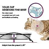 Y YHY Ceramic Raised Cat Bowls, 12 Ounces Cat