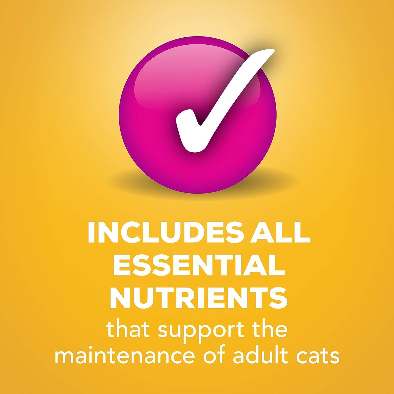 Purina - Friskies Friskies - Vajilla clásica de estilo rústico para gatos mojados, 14 ml (paquete de 24): Amazon.es: Productos para mascotas