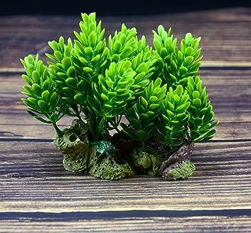 Ari_Mao Plantas Ornamentales de la Hierba de Trigo del Acuario Pajar para Las Decoraciones del Paisaje del Tanque de Pescados: Amazon.es: Hogar