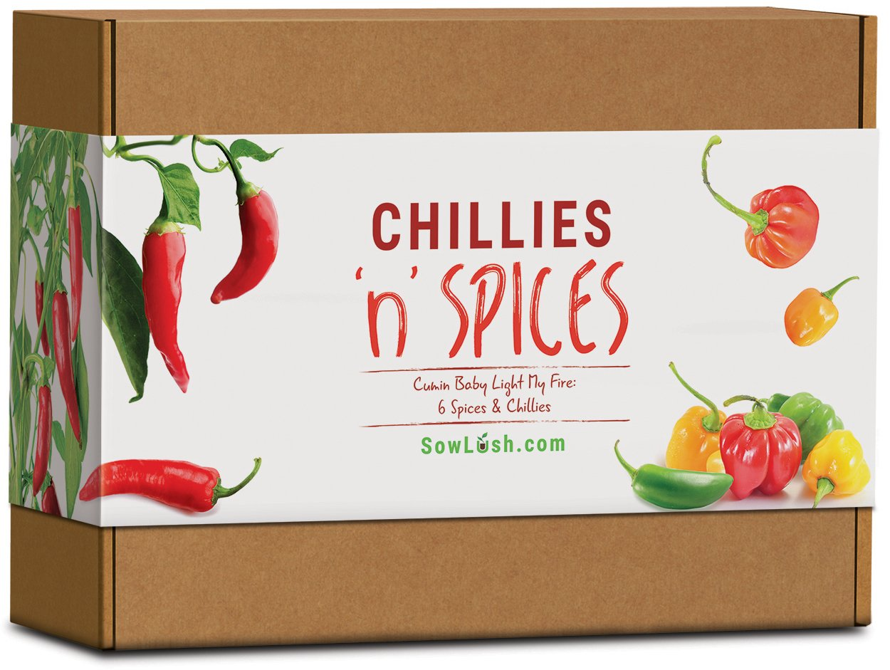 Chillies 'n' Spices Gift Seed Kit. 6 Sensational Chillies & Spices Packed with Flavour. Easy to Grow. Sow Lush
