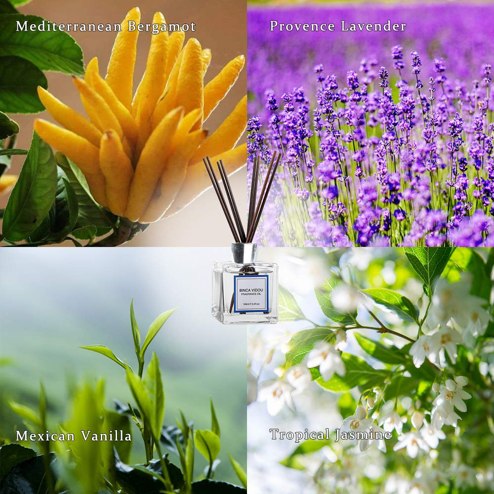 binca vidou Reed Diffuser Set Bergamot, Vanilla, Lavender & Jasmine Reed Oil Diffusers for Bedroom Living Room Office Aromatherapy Oil Reed Diffuser for Gift & Stress Relief 100 ml/3.4 oz by binca vidou (Image #2)