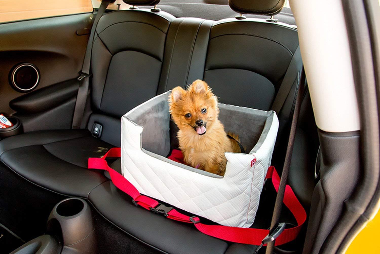 R/ückbank Vordersitz Autositz f/ür Hunde BoutiqueZOO Exclusive Hunde Autositz Gro/ße Hunde Universal Waschbar Hundeautositz f/ür Kleine Mittlere