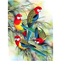 Starnearby Bird 5D Round Diamond Painting Embroidery DIY Needlework Cross Stitch Set Crystal Rhinestone Embroidery Pictures Arts Craft