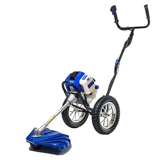 Best Petrol Strimmers