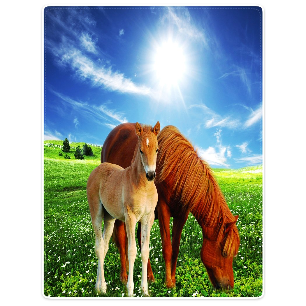 SXCHEN Blanket Sofa Bed Throw Cozy Plush BlanketsTwo horses Green grass animal 40''x50''