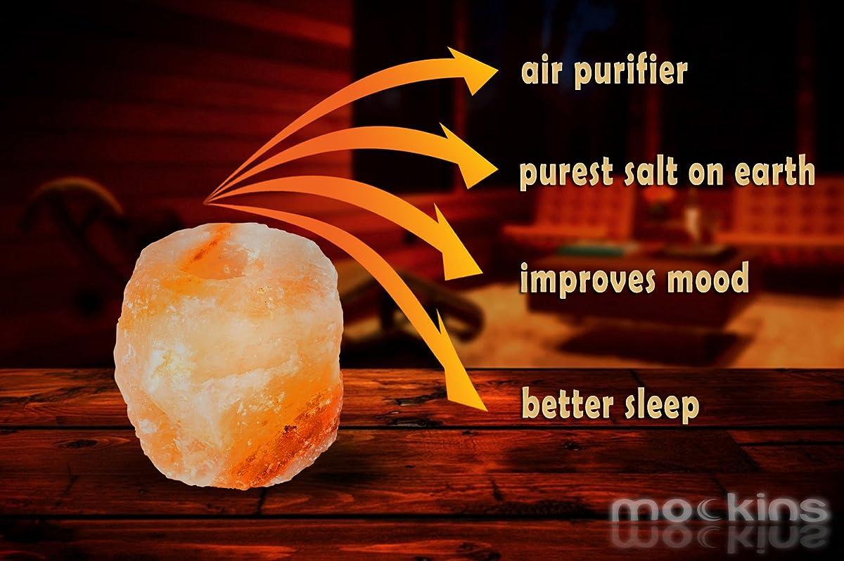 Mockins 2 Pack Natural Himalayan Salt 2.5-lbs Tea Light Holder …
