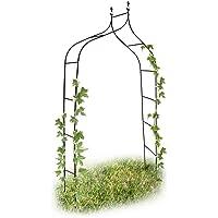 Relaxdays Arche de jardin décoration pour le jardin arche plantes grimpantes, métal, 2.4m