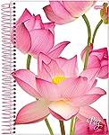 Caderno de 1 Matéria, Jandaia 42474, Multicor, Pacote com 4 Unidades