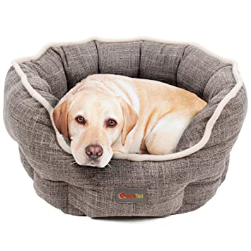 Cama para perros de Quicktail, forma estable de poliéster, antideslizante, esterilla acolchada reversible