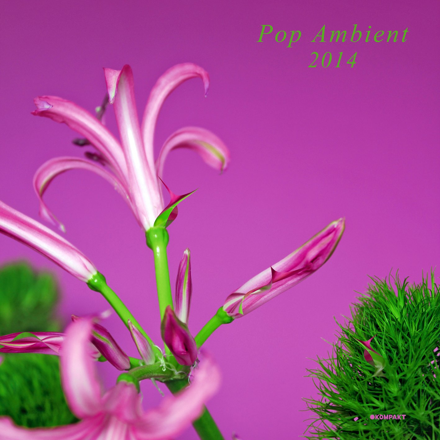 CD : VARIOUS ARTISTS - Pop Ambient 2014 /  Various (CD)