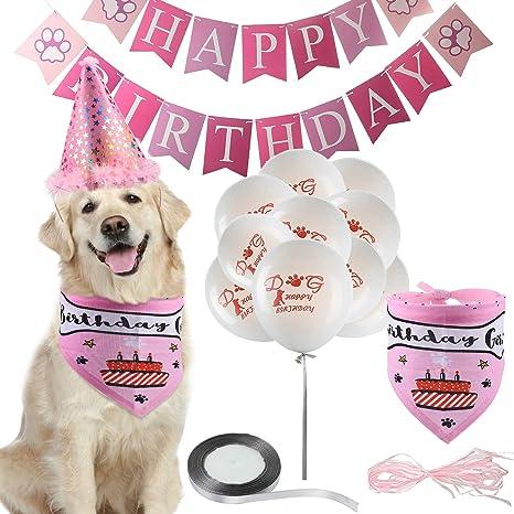 Amazon.com: Gejoy - Juego de decoración de cumpleaños para ...