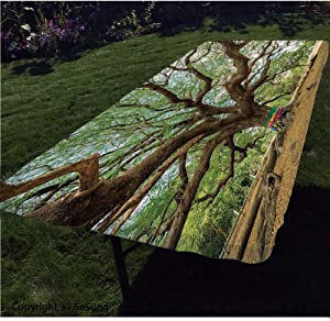 """Nature Polyester Fitted Tablecloth,Magnificent Rain Tree in Thailand with Long Branches Rural Scenery Growth Picture Rectangular Elastic Edge Fitted Table Cover,Fits Rectangular Tables 96x36"""" Brown Gr"""