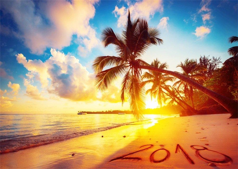 Leowefowa 7X5FT Seaside Sand Beach Backdrop Tropical Palm Tree Backdrops for Photography Sunrise Blue Sky White Cloud Ocean 2018 Vinyl Photo Background Kids Adults Summer Travel Studio Props