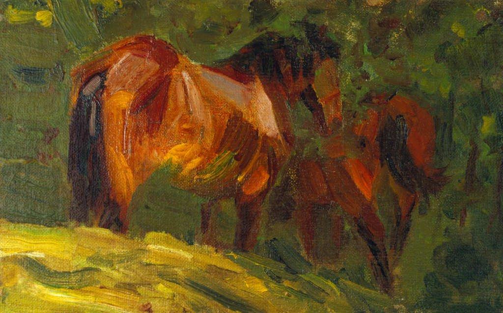 Картинки по запросу stallion