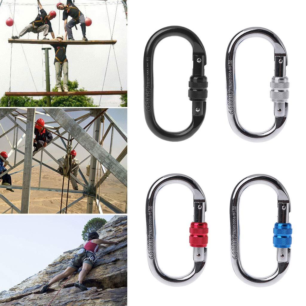 Watermk 25KN Professional Carabiner Rock Climbing Equipment O Shape Safety Master Lock,Black