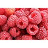 National Gardens Raspberry Fruit Seeds
