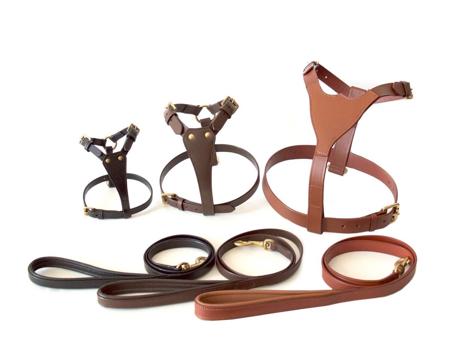XS/ S / M / L / XL / XXL Dog Leather Harness Sets (XXL, Black)