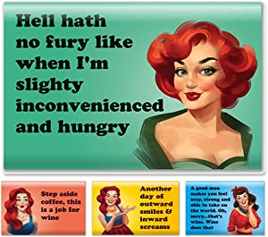 4 Pack Refrigerator Magnets - Funny Fridge Magnet - Perfect Housewarming Gift, or Gift for Women Friends