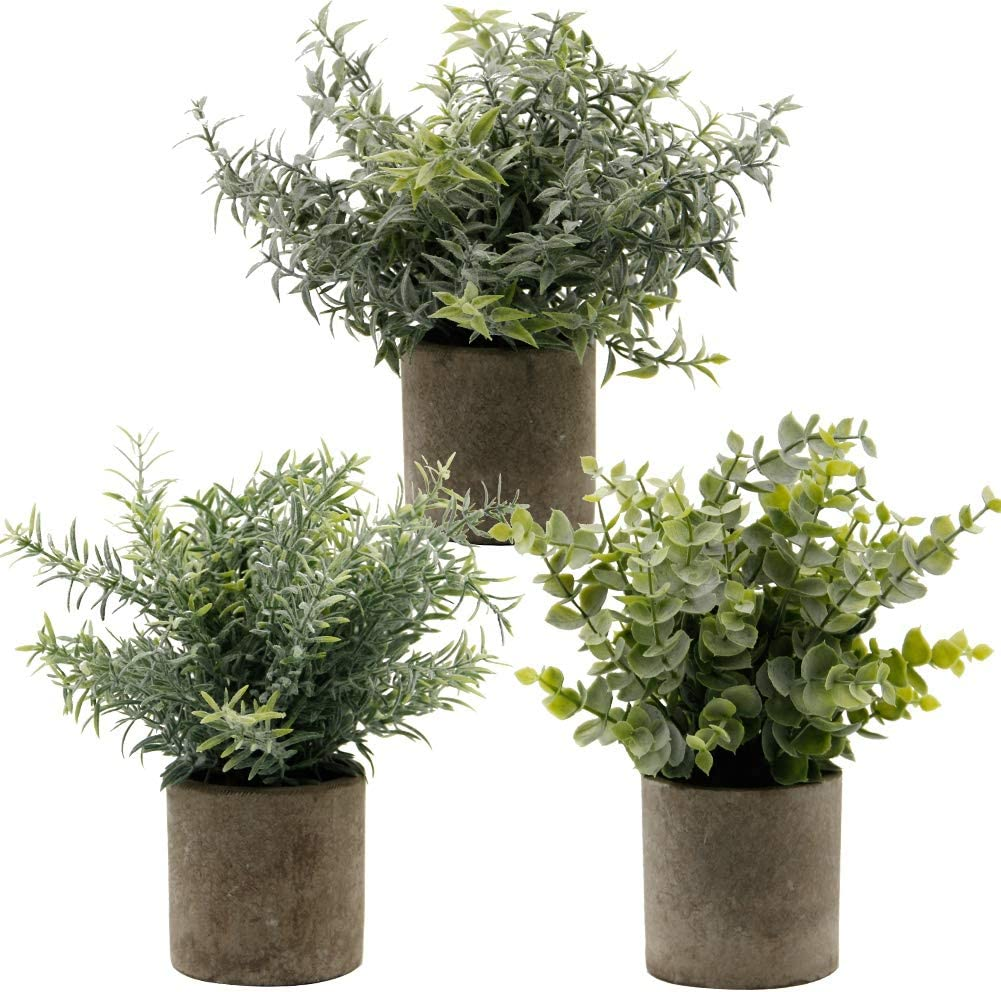 "Zcaukya Small Potted Artificial Plants, Artificial Eucalyptus Plants Fake Rosemary Carnation Caronation 9.5"" Plastic Greenery Plants for Home Office Garden Decor, Indoor & Outdoor, Set of 3"