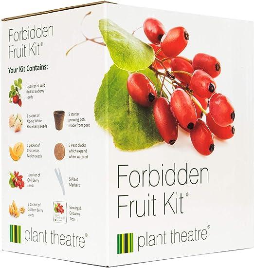 Planta teatro fruto prohibido Kit - 5 frutas deliciosas para ...