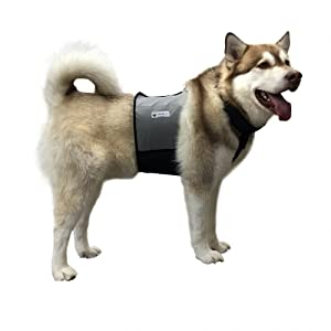 CoolerDog Dog Cooling Vest and Cooling Collar - Ice Vest for Dogs