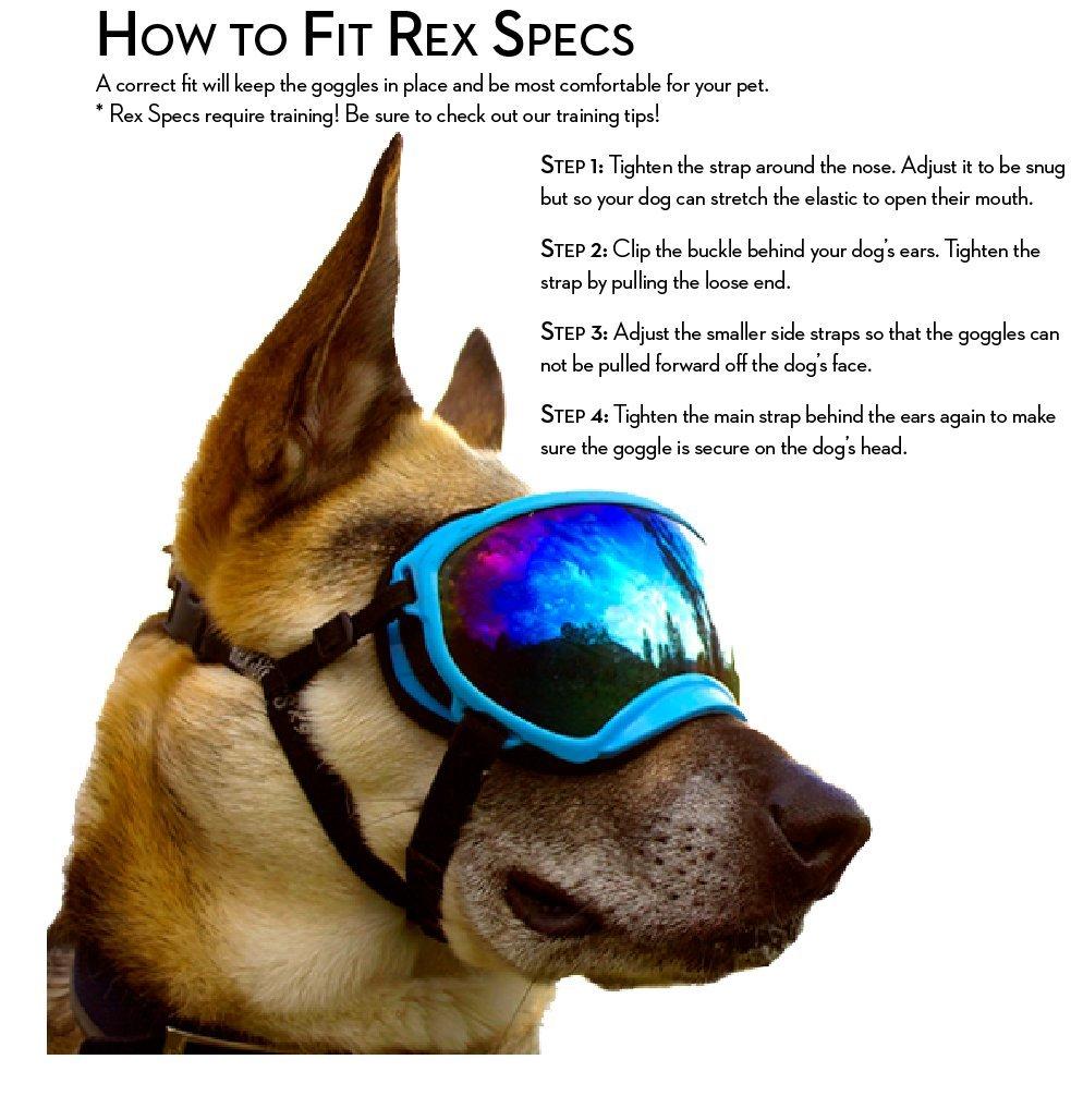 Rex Specs Dog Goggles Large Black Frame/Blue Revo Lens UV400 Protective Eye Wear Goggles