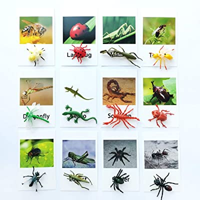 MEROCO Montessori Insect Animal Match Cards and Figurines, Matching Game Animals Montessori Learning Toy, Language Materials TZX108: Toys & Games