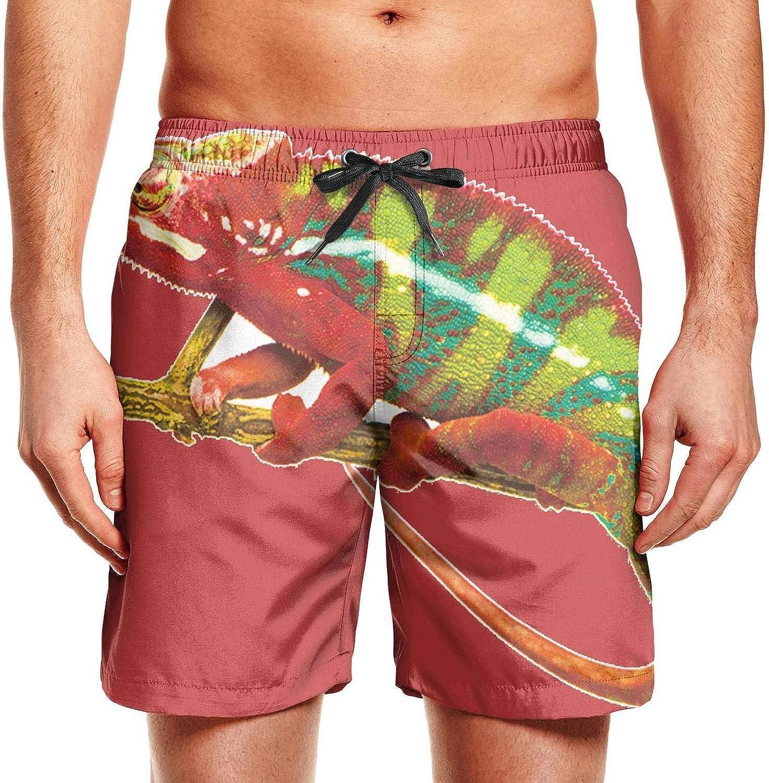 SARA NELL Mens Swim Trunks Tropical Palms Seamless Surfing Beach Board Shorts Swimwear