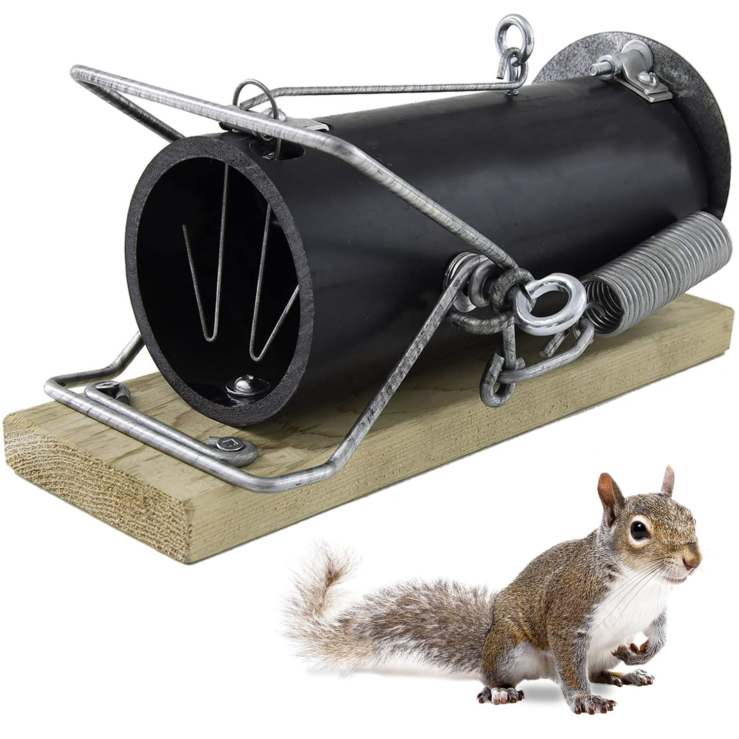 OUELL 3-10 | Snap trap, Spring trap, Deadly trap, Killing trap, Plastic trap, Metal trap, Human trap | Rodent, Rat, Squirrel, Weasel, Stoat, Muskrats | High efficiency and High performance environment by Ouell Traps