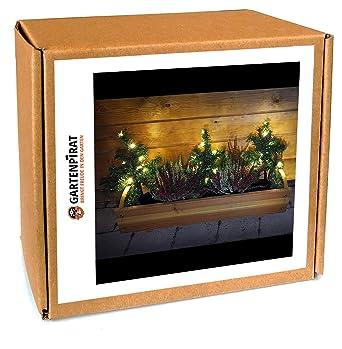 Tannenbaum Beleuchtet Aussen.3x Mini Weihnachtsbaum Tanne Mit Led Beleuchtet Außen Deko Blumenkasten Weihnachten Von Gartenpirat