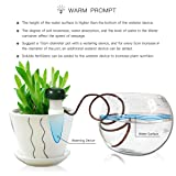 4 or 8 Pack Automatic Slow Release Vacation Plant