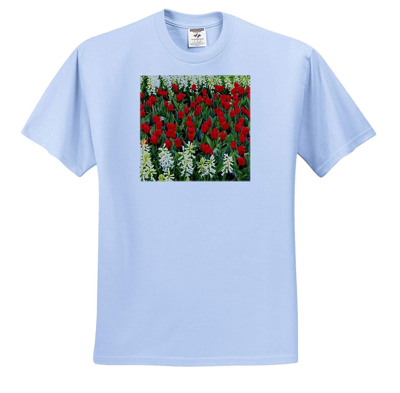 Flowers ts/_313777 3dRose Danita Delimont Netherlands Flower Displays at Keukenhof Gardens Adult T-Shirt XL