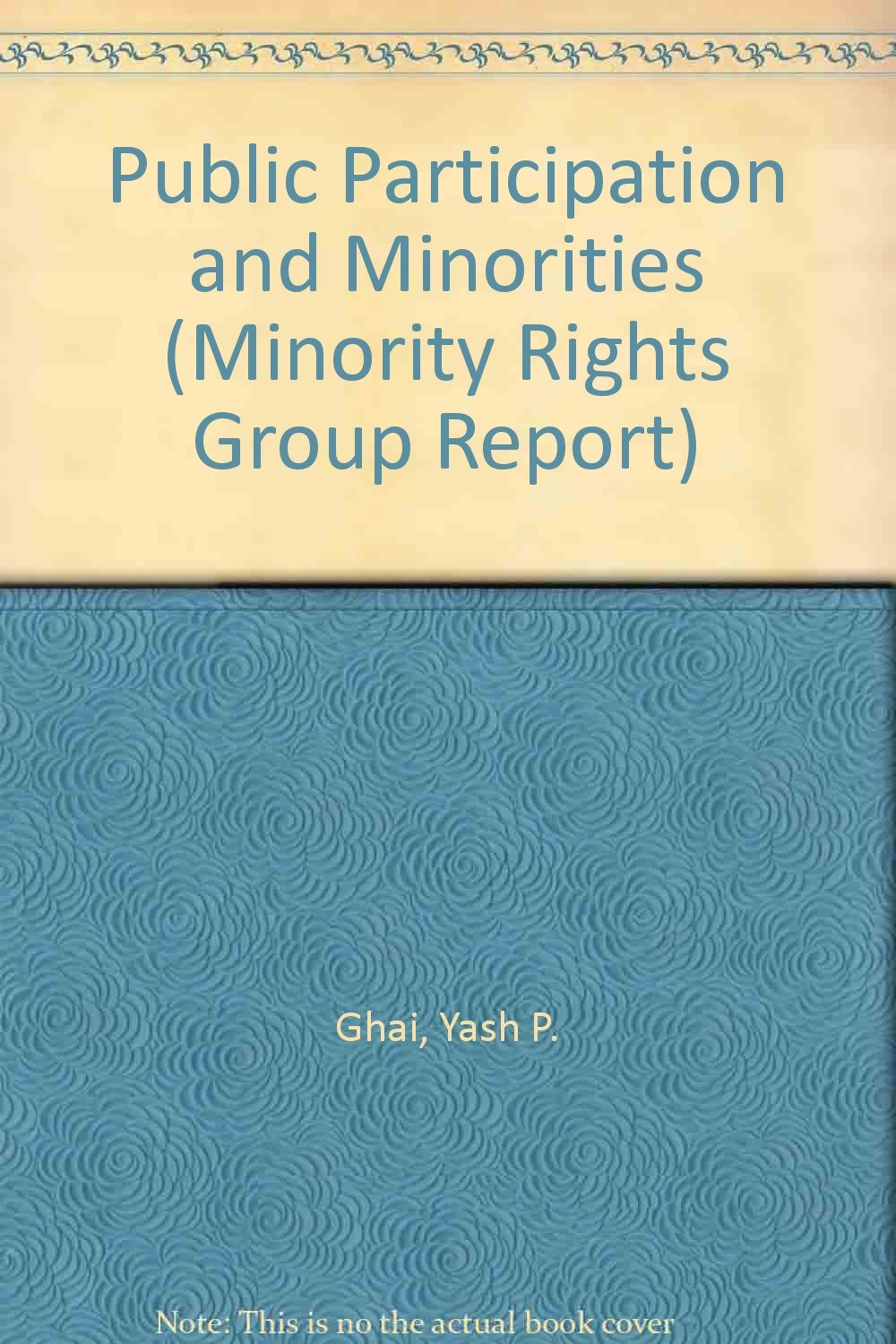 Download Public Participation and Minorities (Minority Rights Group Reports) PDF
