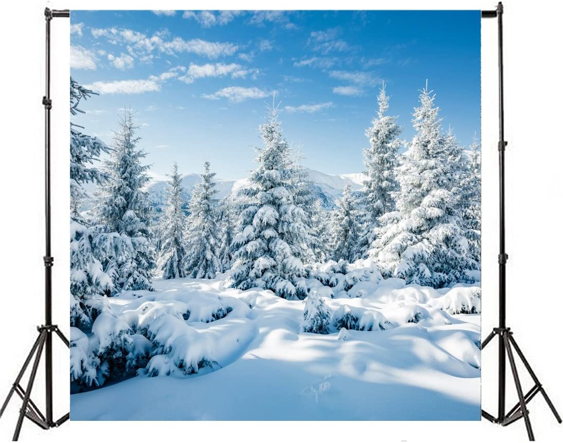 GoEoo 10x8ft Winter Forest Path Snow Covered Trees Background Nature Snowy Landscape Photography Backdrop Outdoor Snowfield Photo Studio Props Merry Christmas Holiday Tour Happy New Year Vinyl Banner