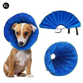 Amazon.com: ZZmeet - Collar hinchable para perro, PVC ...