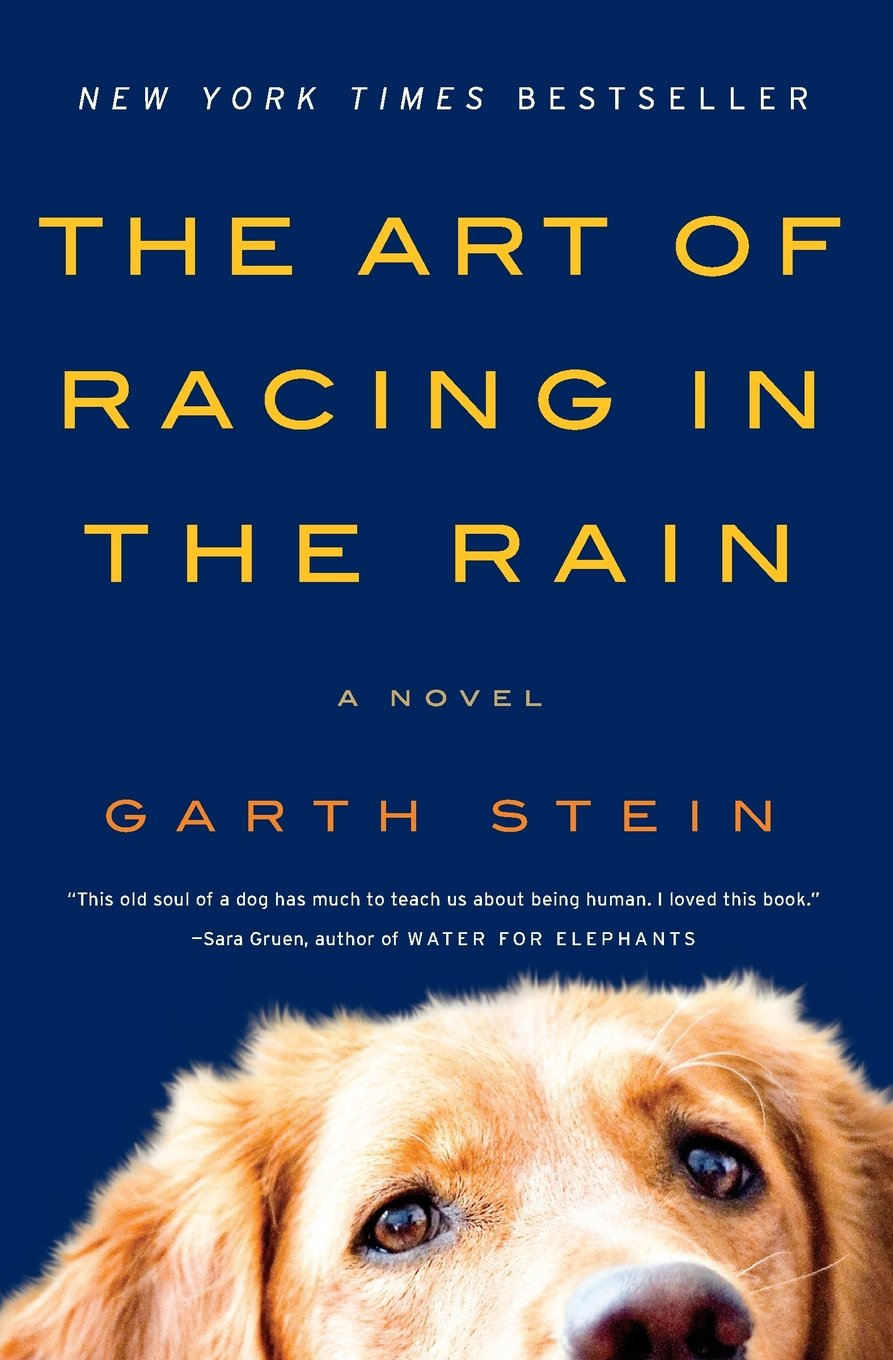Image result for the art of racing in the rain cover