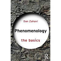 Phenomenology: The Basics